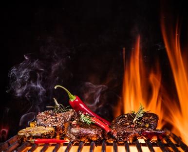Landmann Gasgrill Ir Expert Test : Grill tests: die 40 besten grills 2018 im vergleich testit.de